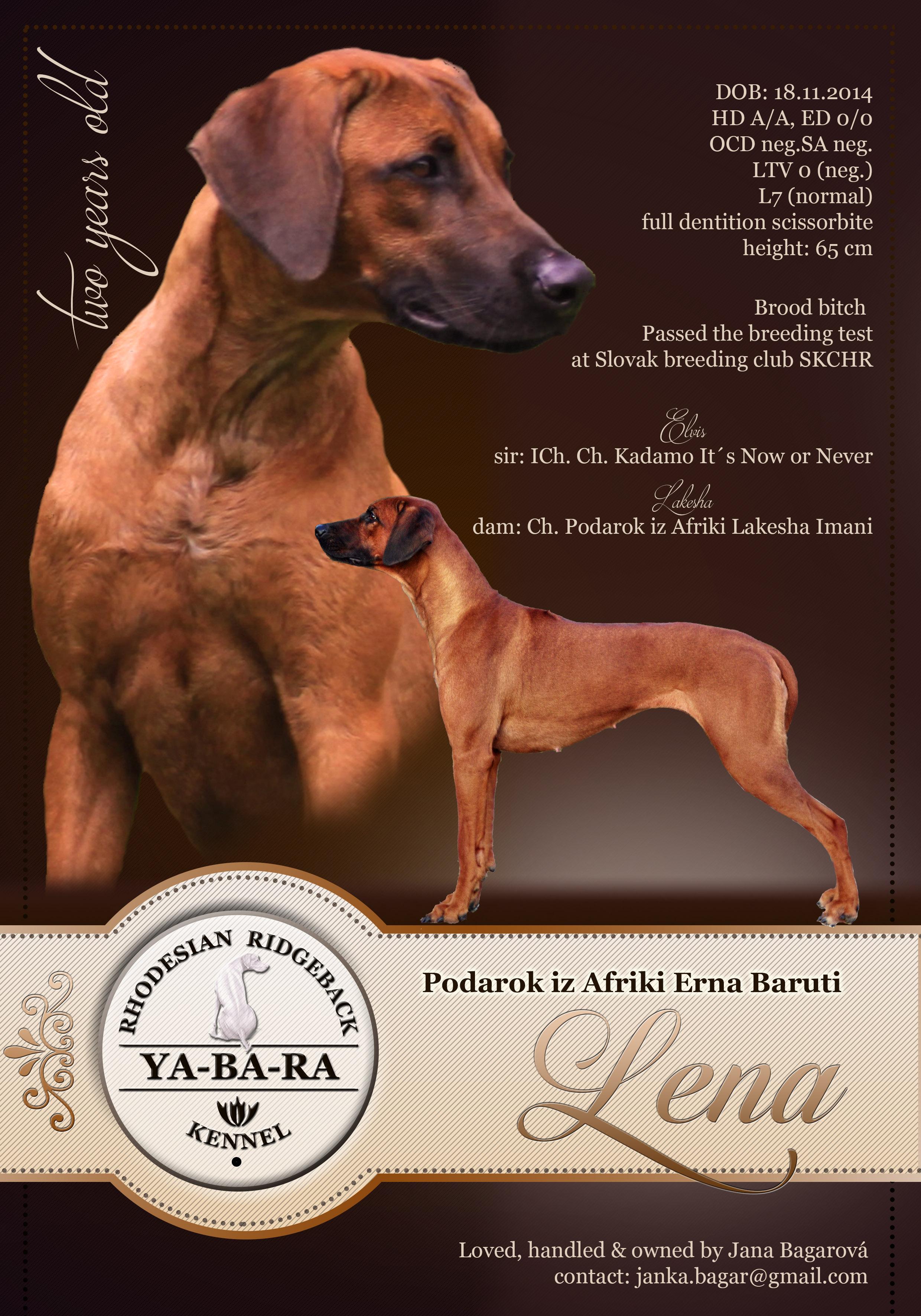 lena_4
